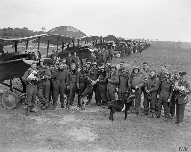 Photo of men in flying suits posed in a straggly line before a line of airplanes, some of the men holding animals (goats and dogs).